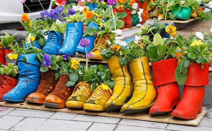 How To Make Flower Pots From Your Old Shoes? Discover The Cheapest Ways